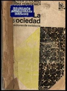 La sociedad : lecciones de sociología